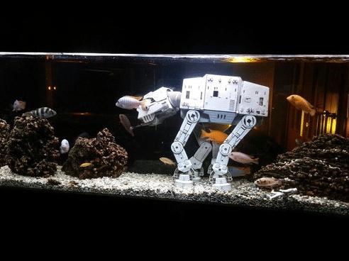Creating The Perfect Star Wars Fish Tank | Total Fish Tank