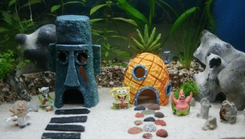 spongebob fish tank ideas