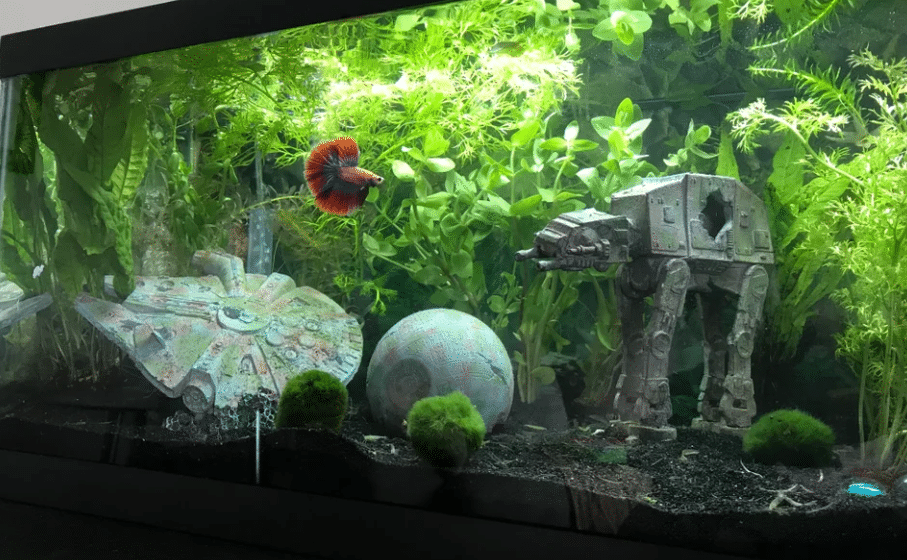 star wars fish tank decor