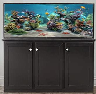 best 100 gallon fish tank